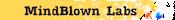 Mindblown Labs Logo